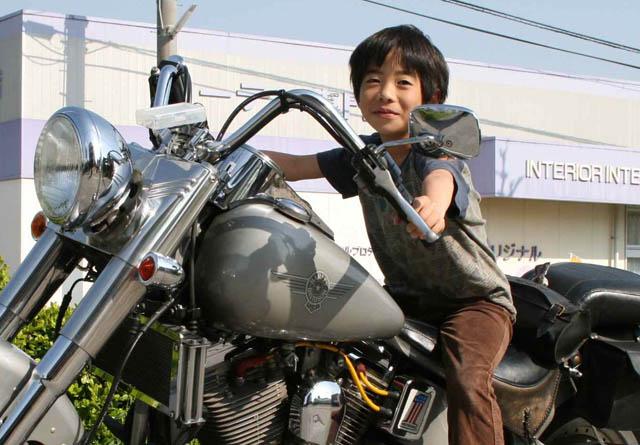 Harley-DavidsonFATBOY