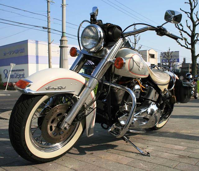 Harley-DavidsonFLSTN