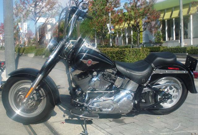 Harley-DavidsonFLSTF3・TC88